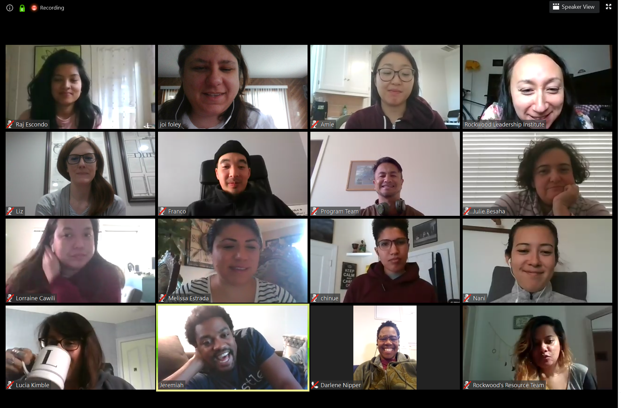 A mixed group of 16 people, together in a video chat.